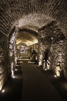 A 500-year-old series of tunnels long believed to be folkloric was uncovered beneath the streets of Puebla. http://www.atlasobscura.com/places/secrets-of-puebla-tunnel?utm_source=Atlas+Obscura+Daily+Newsletter&utm_campaign=e175e027b0-Newsletter_1_17_2017&utm_medium=email&utm_term=0_f36db9c480-e175e027b0-63203845&ct=t(Newsletter_1_17_2017)&mc_cid=e175e027b0&mc_eid=bb8db3a6a5