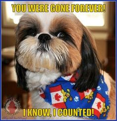 You were gone forever! I know, I counted!