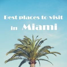 I'm going to Miami! - Design x Travel Miami Florida Vacation, Florida Travel, Will Smith Songs, Florida Sunshine, Sunshine State, Vacation Spots, Vacation Ideas, Miami Photos, South Beach