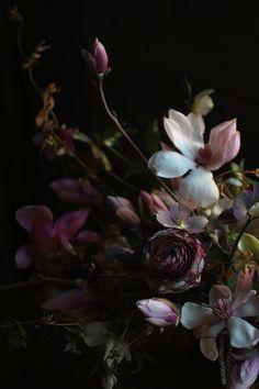 redbrickfarmhouse:  sensuous saipua… (via a colour feast… |)