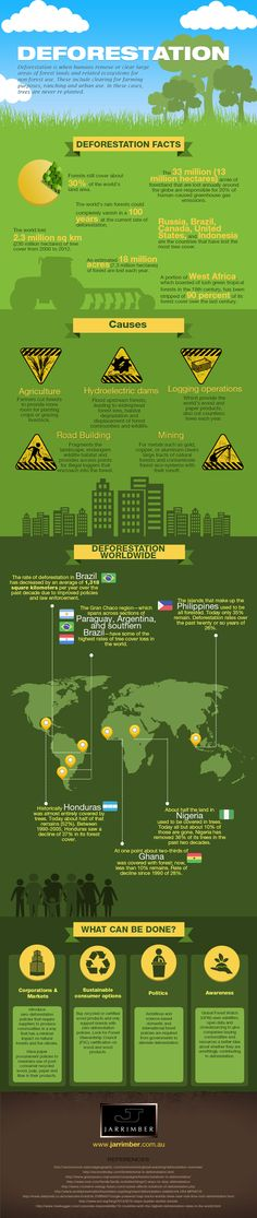 This info-graphic covers the subject of deforestation, the facts surrounding it, the causes and what is happening from a worldwide point of view.