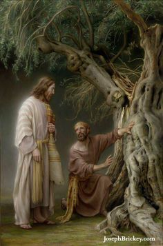"""""""And it came to pass that the Lord of the vineyard said unto the servant...What could I have done more for my vineyard? """"But, behold, the servant said unto the Lord of the vineyard: Spare it a little longer."""" (Jacob 5:49-50)"""
