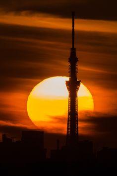Sunrise in Tokyo Skytree, Japan