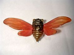 georges flamand cicada