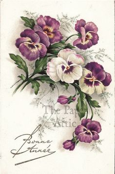 Pansies Pansy Antique Vintage French Chromo Postcard by lois Decoupage Vintage, Vintage Diy, Vintage Ephemera, Vintage Postcards, Vintage Images, Art Floral, Vintage Flowers, Vintage Floral, Vintage Greeting Cards