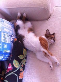 Dormindo com alongamento