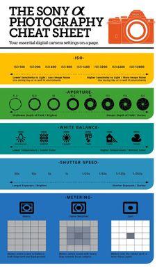 Sony Alpha Cheat Sheet. Dslr Photography Tips, Photography Cheat Sheets, Photography Tips For Beginners, Photography Lessons, Photography Tutorials, Digital Photography, Photography Training, Iphone Photography, Professional Photography