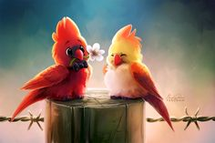 Cardinals by TsaoShin.deviantart.com on @DeviantArt