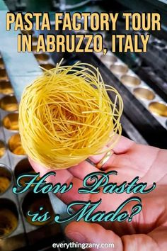 Wondering how pasta is made? Here's our Pasta Factory tour in Abruzzo, Italy. Delverde factory showed us how they make their delicious pasta from scratch. Whole Wheat Spaghetti, Fresh Pasta, Food Inspiration, Travel Inspiration, Culture Travel, Different Recipes, Trip Planning