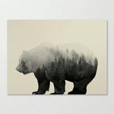 Bear in the mist av Andreas Lie