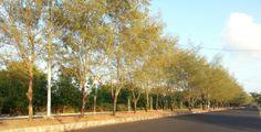 Serangan Island, BALI in the morning