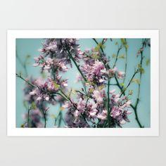 Art Prints, Nature, Plants, Art Impressions, Naturaleza, Plant, Nature Illustration, Off Grid, Planets