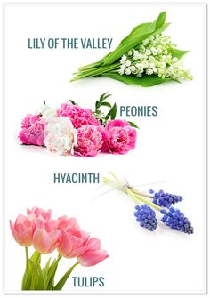 Perfect spring flowers for your Spring Wedding