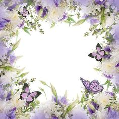 Ella and Viv Paper Company - The Butterfly Effect Collection - 12 x 12 Paper - Butterfly Garden Flower Background Wallpaper, Flower Backgrounds, Paper Background, Boarders And Frames, Frame Border Design, Paper Napkins For Decoupage, Paper Companies, Paper Butterflies, Borders For Paper