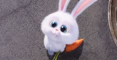 Secret Life of Pets Movie Offers Easter Greetings - ComingSoon.net