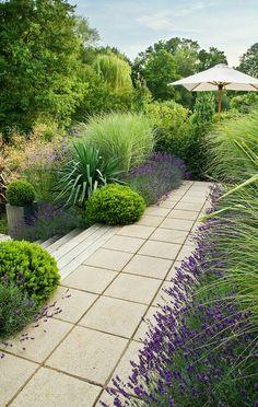 30 Best Front Yard And Backyard Landscaping Ideas on A Budget 30 besten Vorgarten und Hinterhof Landschaftsbau Ideen mit kleinem Budget Lavender Garden, Lush Garden, Dream Garden, Planting Lavender, Garden Care, Lavender Hedge, Growing Lavender, Garden Pool, Modern Garden Design