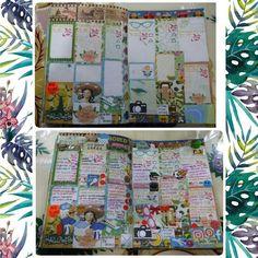 My last week  layout  complete