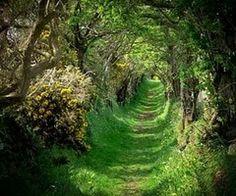 Round Road, Ireland