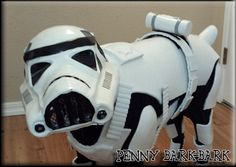 Stormtrooper Penny Diy Dog Costumes, Star Wars, Dogs, Pet Dogs, Doggies, Starwars, Star Wars Art