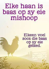 elke haan op sy eie mishoop Some Quotes, Best Quotes, Afrikaans Language, Afrikaanse Quotes, Quote Board, Idioms, Slogan, Teaching, Humor