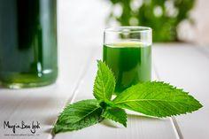 Il liquore alla menta fatto in casa è un preparato rinfrescante e dal colore verde intenso. Perfetto per essere servito come digestivo nelle serate estive.