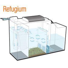 The Aqueon ProFlex Aquarium Sump Filtration System has three different operational modes to best match the filtration needs of the aquarium. Saltwater Aquarium Setup, Aquarium Sump, Aquarium Terrarium, Saltwater Fish Tanks, Diy Aquarium, Tropical Aquarium, Aquarium Design, Marine Aquarium, Aquarium Fish Tank