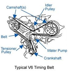 One Style of a Timing Belt.