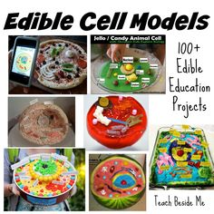 100 Edible Education Projects - Teach Beside Me