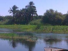 لوحات الريف المصرى - Google Search