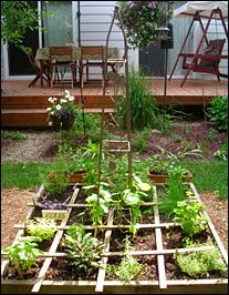 Cool herb garden.  Love the cross bars for dividing plants.