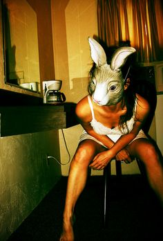 Waiting for the Coffee Animal Masks, Animal Heads, Chesire Cat, Creepy Art, Foto Art, Dark Art, Pulp Fiction, Alice In Wonderland, Art Photography
