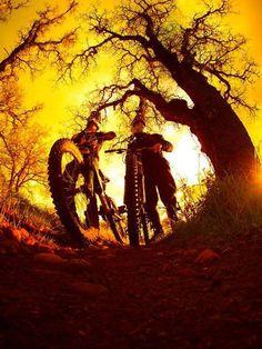 Golden rides
