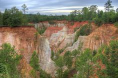 Beautiful Providence Canyon in west-central Georgia reveals the geology of the Georgia Piedmont Providence Canyon, Piedmont Region, Georgia On My Mind, Geology, Grand Canyon, Atlanta, Outdoors, Deep, Landscape