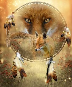 Dream Catcher- Spirit Of The Red Fox Art Print by Carol Cavalaris. All prints are professionally printed, packaged, and shipped within 3 - 4 business days. Choose from multiple sizes and hundreds of frame and mat options. Native Art, Native American Art, American Indians, Der Steppenwolf, Art Fox, Dream Catcher Art, Spiritual Animal, Fox Spirit, Animal Spirit Guides