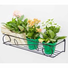 Jardineira de Parede Grande :: Aramado.com