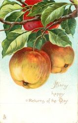 Two apples hanging, another above touching top of card