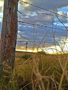 Barbwire fence and windmill Country Charm, Country Life, Country Living, Country Style, Country Fences, Country Roads, Rustic Fence, Old Windmills, Old Fences