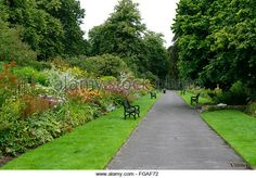 Image result for perennial garden hedge