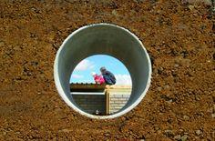 Slideshow Image 1 Dog Bowls, Image, Projects