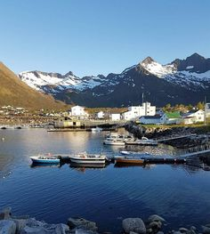 Mefjordvær,Senja/ Foto:Trine Hafslund/ Fb:Nord Norge i bilder