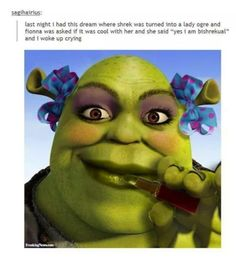 trans shrek and her wife is the content we deserve Stupid Memes, Stupid Funny, The Funny, Funny Stuff, Random Stuff, Funny Relatable Memes, Funny Posts, Funny Quotes, Shrek Memes