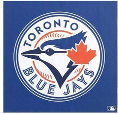 Toronto Blue Jays WinCraft x Circle Logo Single-Sided Vertical Banner Toronto Blue Jays Logo, Messi Gif, Teheran, Mlb Teams, Sports Teams, Indiana, Royals, Like4like, Basketball Shoes