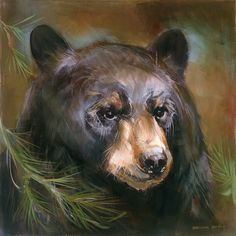 Black bear portrait with pine sprig in the left corner. Art by Mason Maloof Designs. Bear Paintings, Bear Drawing, Bear Decor, Bear Pictures, Art Mural, Wall Art, Bear Art, Wildlife Art, Oeuvre D'art