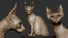 Sphinx Cat, Cg Artist, Zbrush, Maya, Sculpting, 3 D, Lion Sculpture, Illustration Art, Photoshop