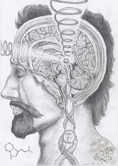 thestreetphilosopher: DMT - Pineal Gland / Sacred Geometry <3