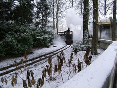 Winter Efteling Cool Themes, Photo And Video, Park, Winter, January, Outdoor, Holland, Winter Time, Outdoors
