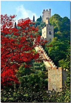 Medieval walls - Marostica, Vicenza, Italy Copyright: Attila Szili