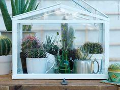 litet växthus (Kajsa vill dock helst ha det i trä, inte målat)