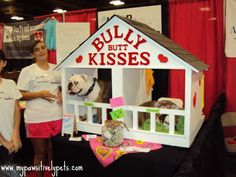The Austin Pet Expo Experience | Pawsitively Pets