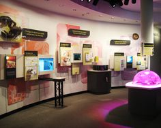 Dynamic Climate On permanent exhibit at the Cleveland Museum of Natural History